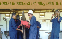 Forest Industries Training Institute Logo