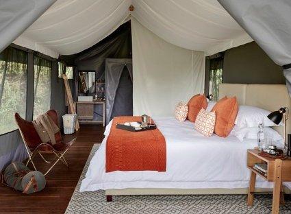 Ngorongoro el ARCA DE NOÉ