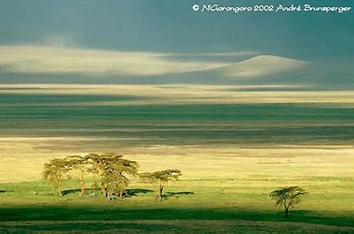 N'Gorongoro tanzanie safari tanzanie authentique en 4x4 privatif dans les parcs du Nord