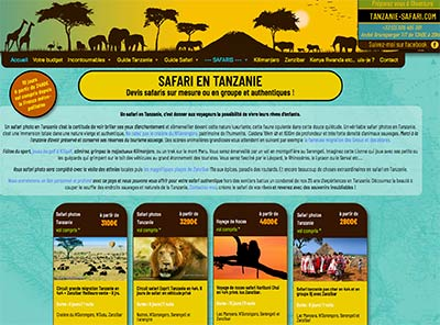 organiser votre voyage safari en tanzanie