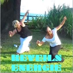 Vidéos de Réveil énergétique