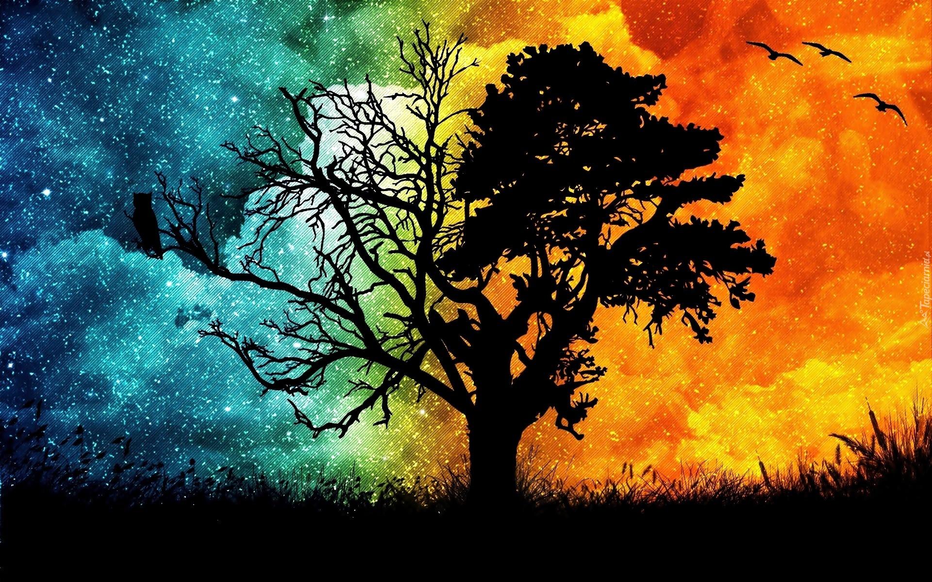Drzewo Ptaki Ogie Woda Abstrakcja