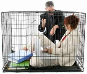 A Proper Job - caged employee