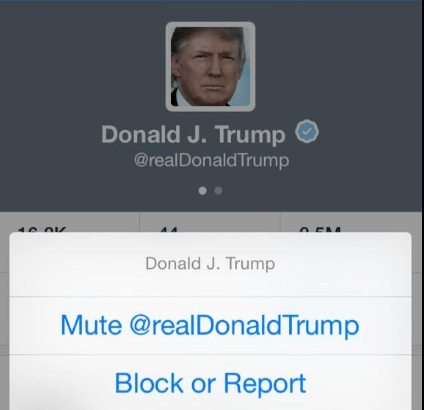 Twitter Mute Feature May Soon Be Implemented