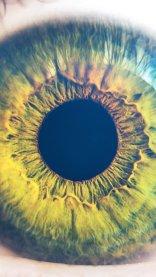 Human Eye Closeup Wallpaper in HD for iPhone 7