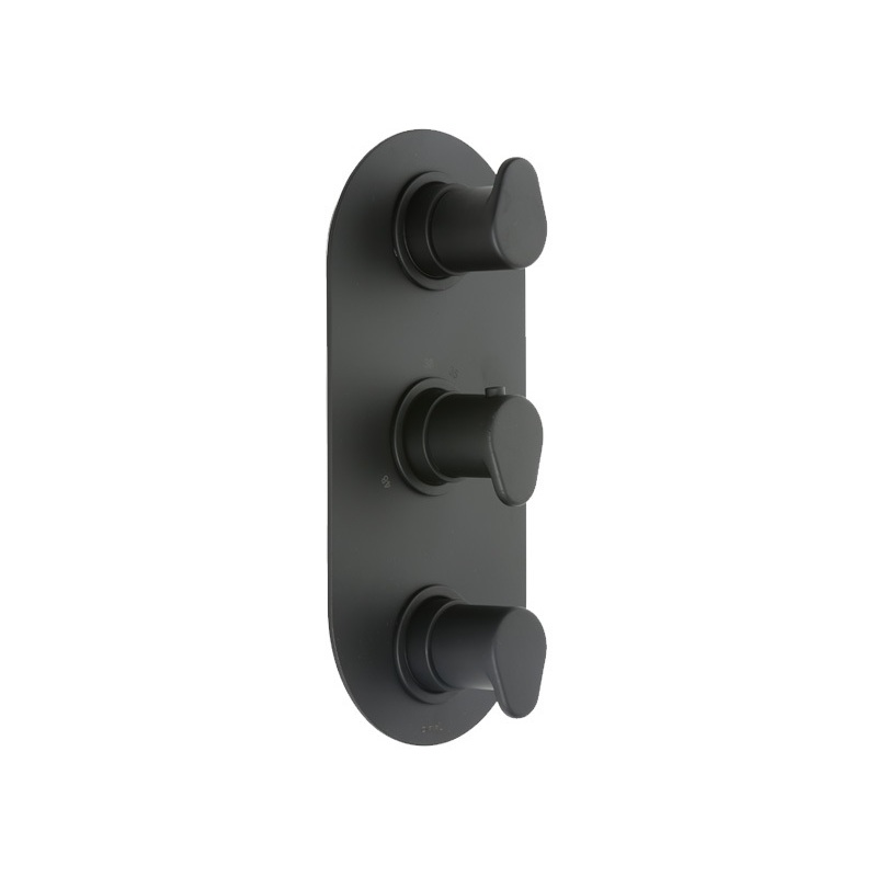 Cifial Black 3 Control Thermostatic Valve, Vertical, 2 Outlets
