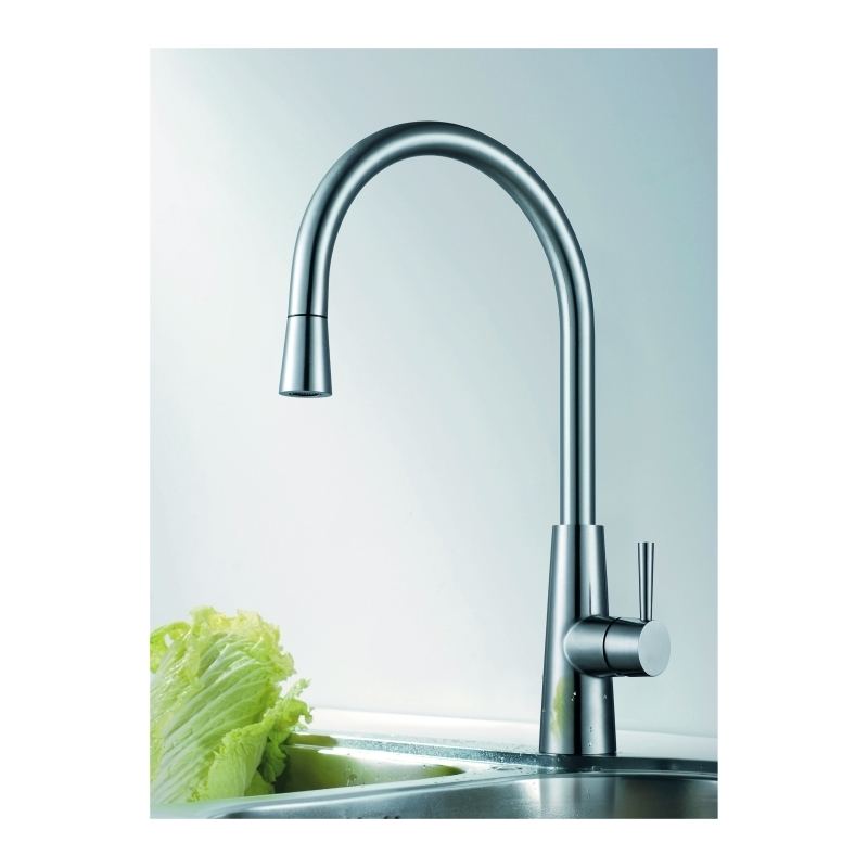 Clearwater Titania Mono Sink Mixer with Pull-Out Stainless Steel