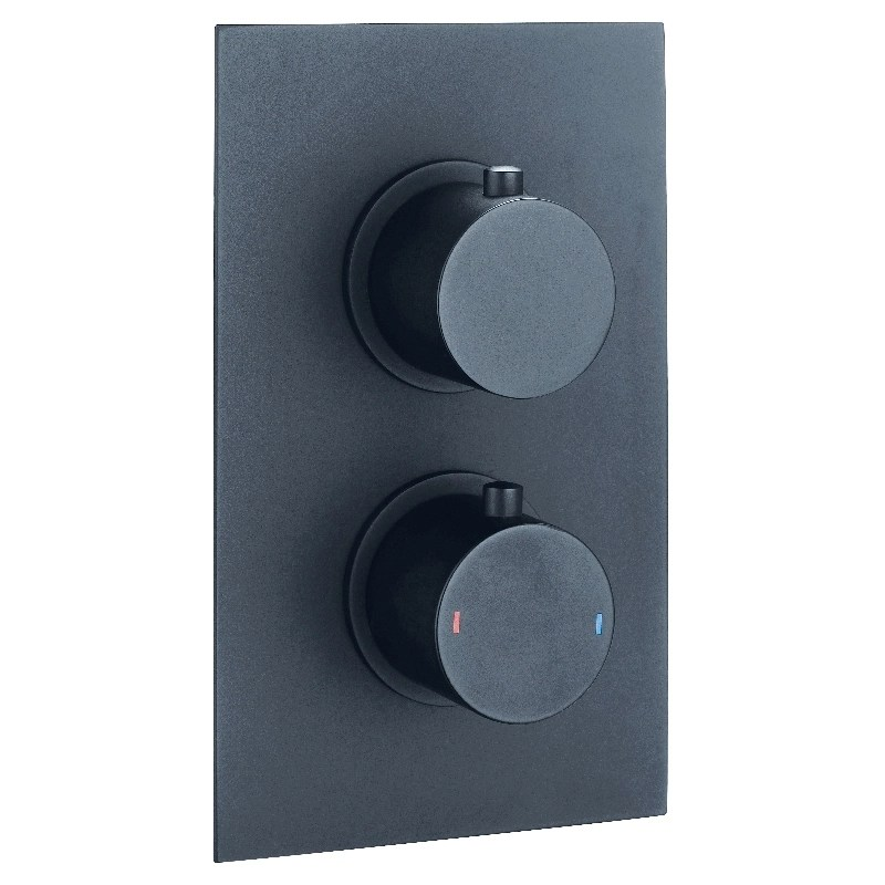 Synergy Twin Concealed Black Thermostatic Round Shower Valve