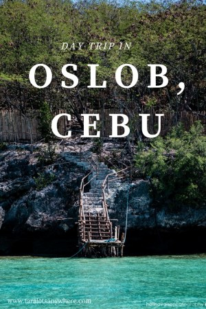 Day trip to Oslob