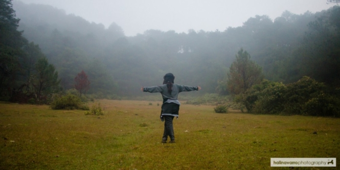 Clearing in Mount Kofafey