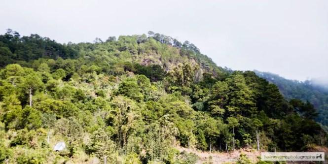 Mount Kofafey in Bontoc