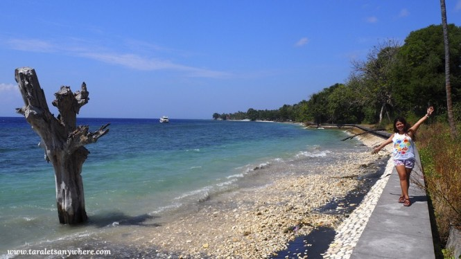 Random black-sand beach in Nusa Penida