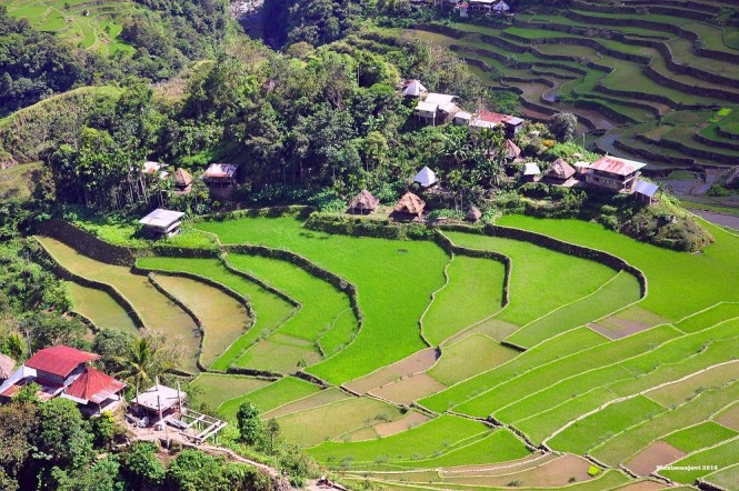 PH adventure collab - trekking Batad rice terraces