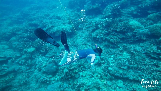 End of down the line - basic freediving lesson