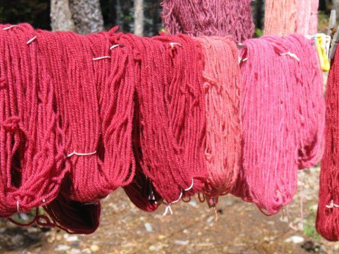 lana 1