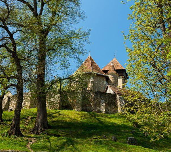 cetatea-catalin-georgescu