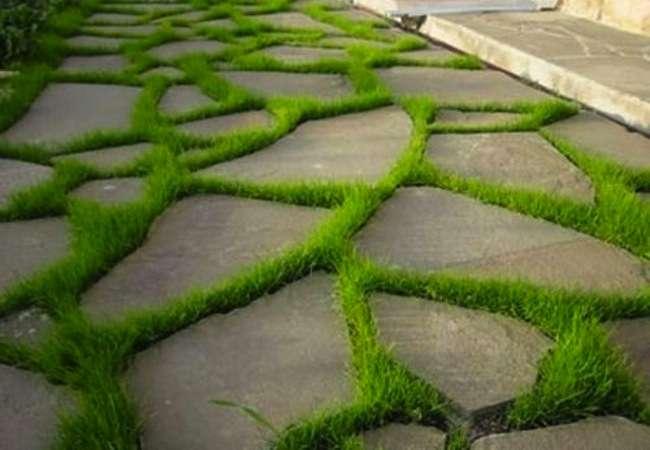 garden_path_ideas_bobvila.com_