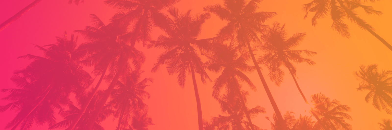 Palm Tree Banner with Gradient