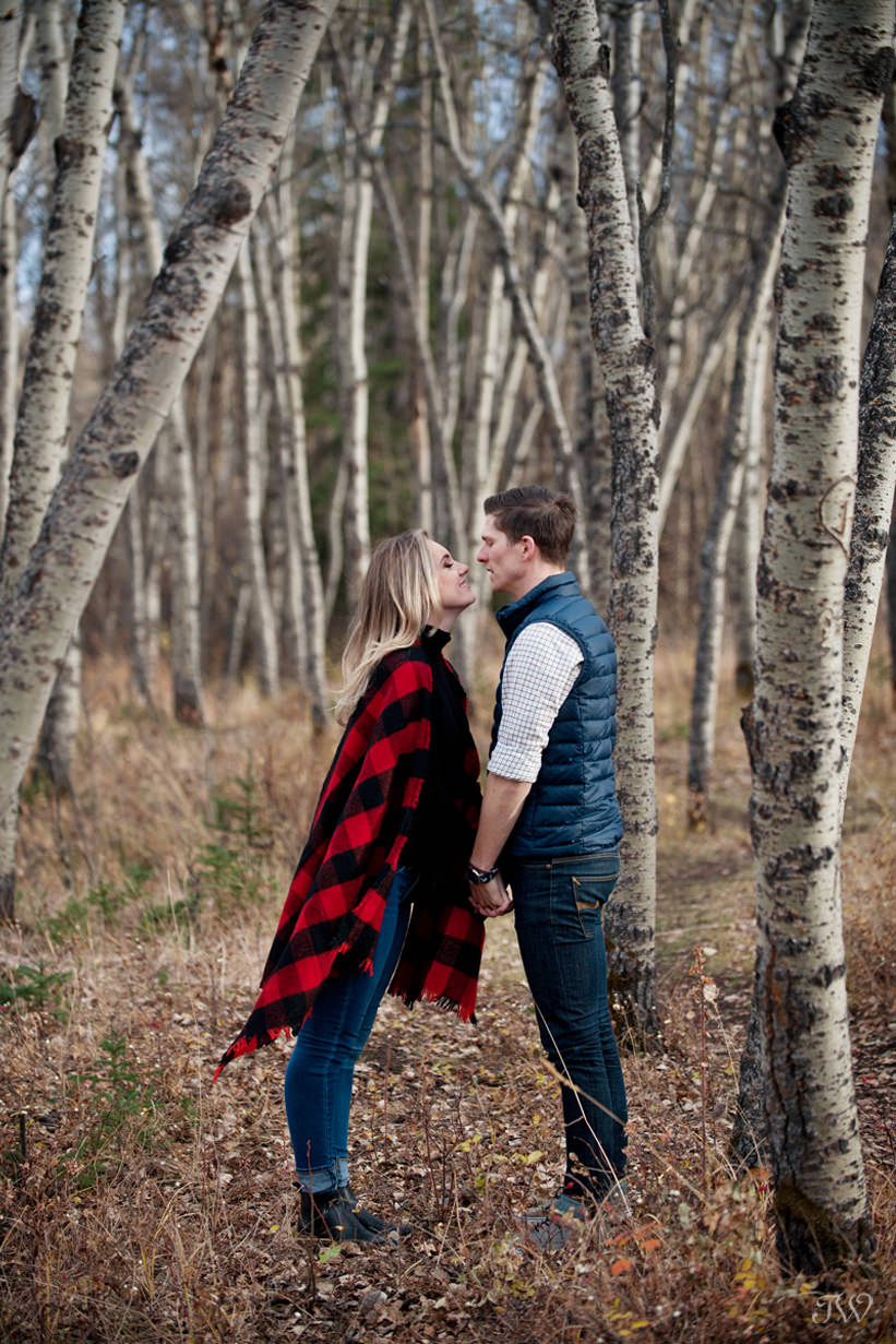 kiss in the poplars at a Big Hill Springs engagement session captured by Tara Whittaker Photography