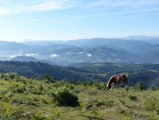 Tremblement de terre vendredi matin dans les Pyrénées