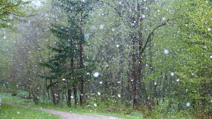 Tarbes, la neige n'est pas loin ce jeudi