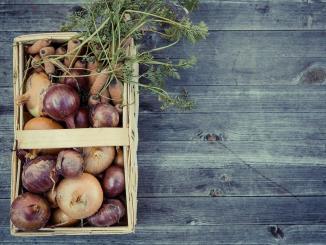 La région Occitanie lance une plateforme Internet pour la livraison de produits locaux