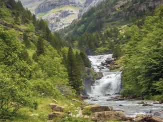 Malgré le confinement, le personnel du Parc National des Pyrénées tente de préparer l'avenir