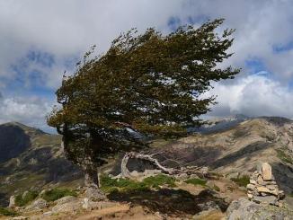 Alerte aux vents violents dans les Hautes Pyrénées