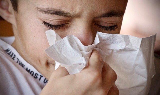 Tarbes Premières alertes aux pollens