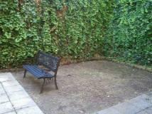 Ripristino giardino (2)