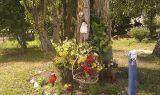Kapliczka w drzewie prawdopodobnie uderzonym przez piorun