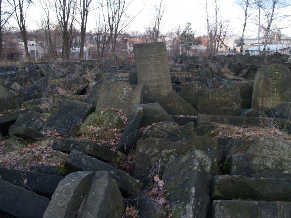 Cmentarz Żydowski / fot. targowek.info