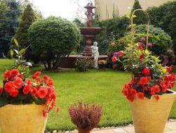 Ogród Moje Hobby