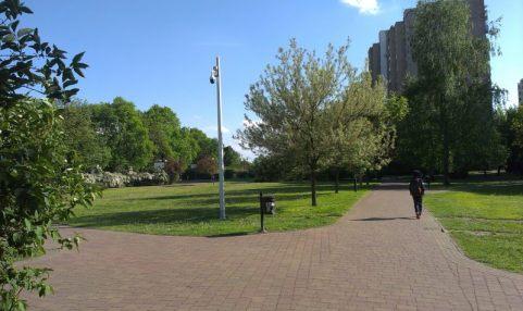 park wiecha1