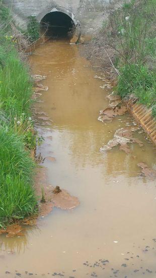 zanieczyszczenie kanalu Brodnowskiego3