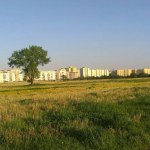 Kolejna część pola PGR sprzedana. Będzie osiedle Dom Development