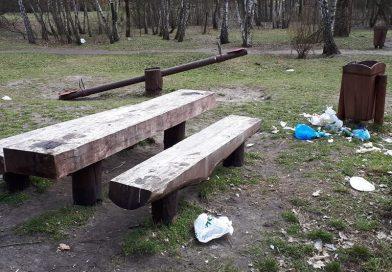 W lesie Bródnowskim bez zmian: góra śmieci po weekendzie