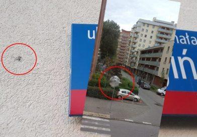 Ktoś ostrzelał kamienicę na Bródnie