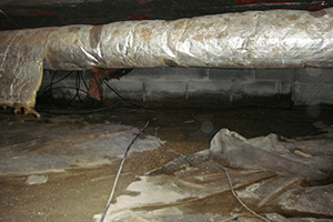When the Solution in Your Crawl Space Becomes Part of the Problem