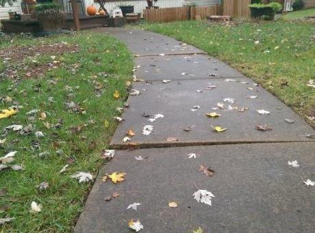 Tar Heel Tip of the Week: Is your Sidewalk a Safety Concern for Trick or Treaters?