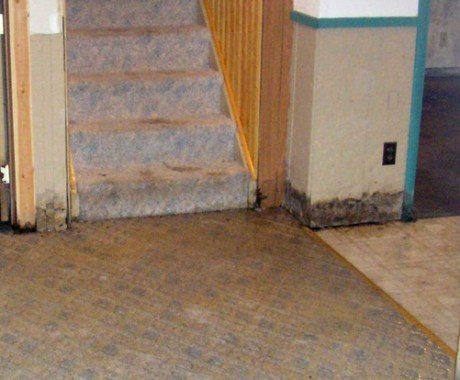Moist Basements – Troubles and Prone Environments
