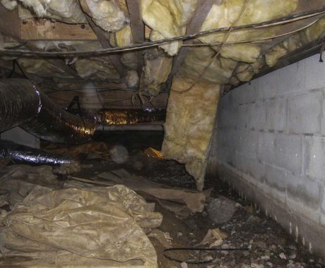 What does it mean when a crawl space is damp?