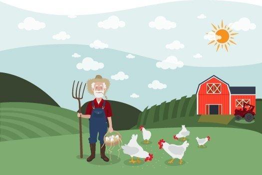 Kanatlı Eti Üreten Tarımsal İşletmeler