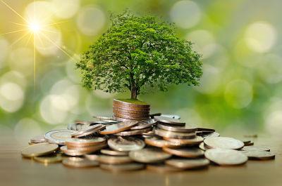 prosperidade financeira magia dinheiro