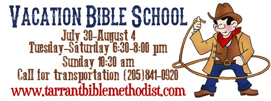 VBS 2013 small