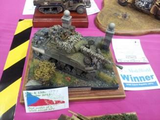 Tank - one of the IPMS winners