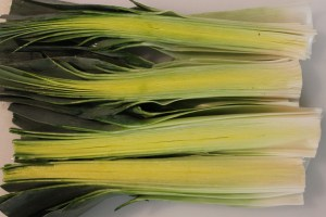 The many layers of leeks. Cut these down and wash them thoroughly.
