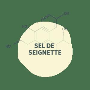 sel-seignette