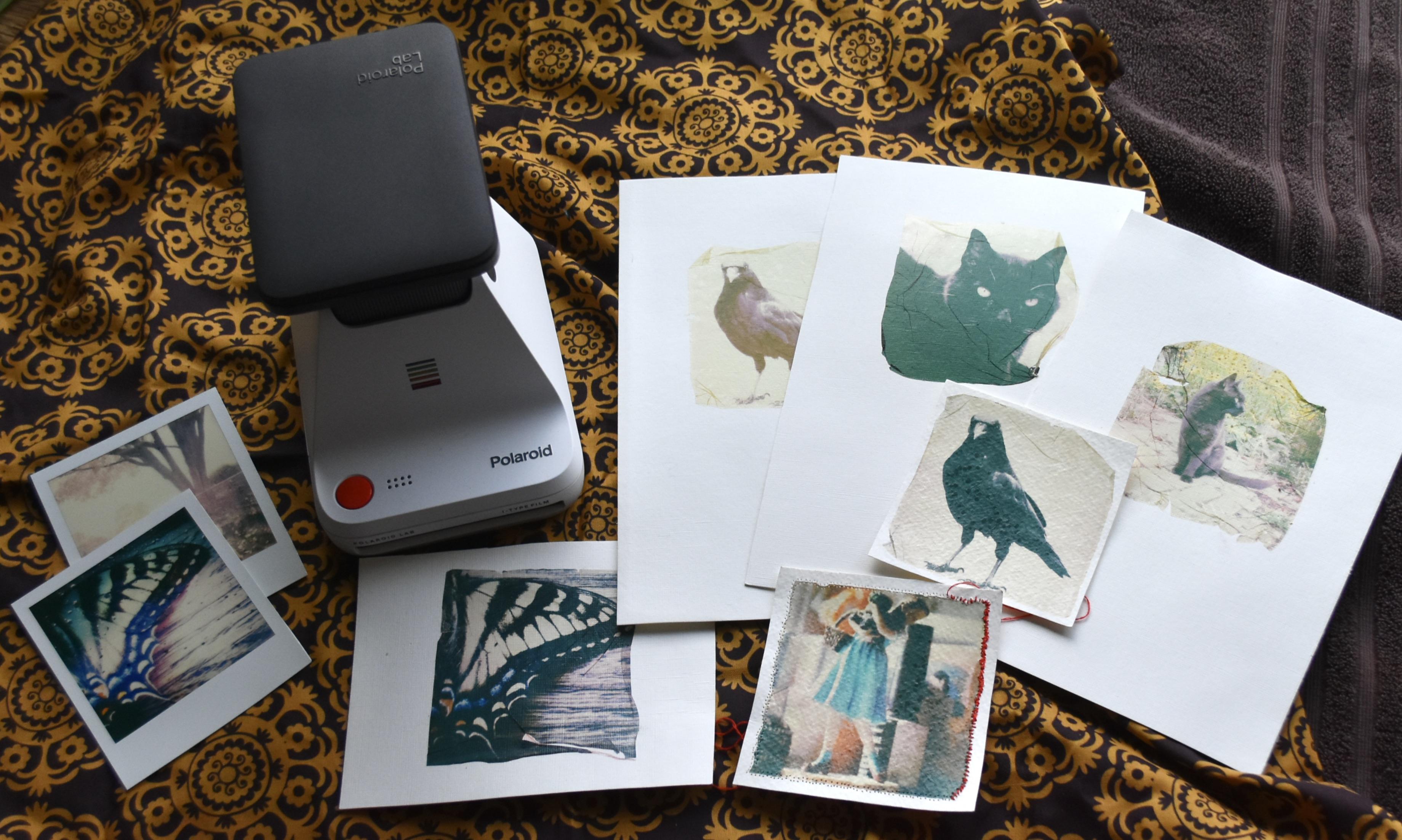 Experimenting: Polaroid Photolab and Polaroid Transfers