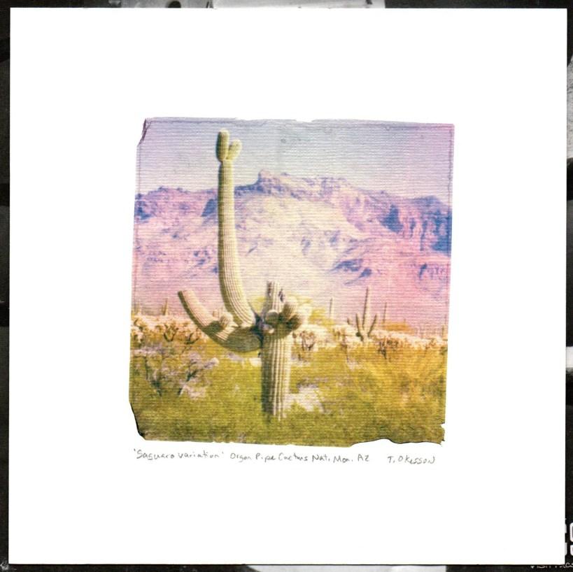 Saguaro Variation, 2020.